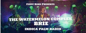 The Watermelon Complex @ The Fiery Bird Live Music Venue